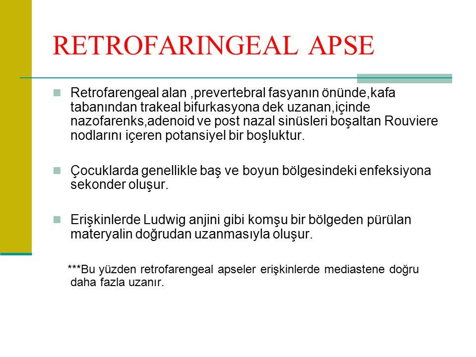 RETROFARINGEAL APSE Retrofarengeal alan,prevertebral fasyanın önünde,kafa tabanından trakeal bifurkasyona dek uzanan,içinde nazofarenks,adenoid ve post nazal sinüsleri boşaltan Rouviere nodlarını içeren potansiyel bir boşluktur.