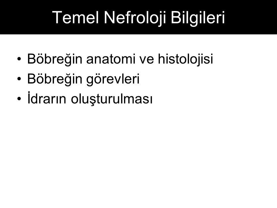 Temel Nefroloji Bilgileri Böbreğin anatomi ve histolojisi Böbreğin görevleri İdrarın oluşturulması