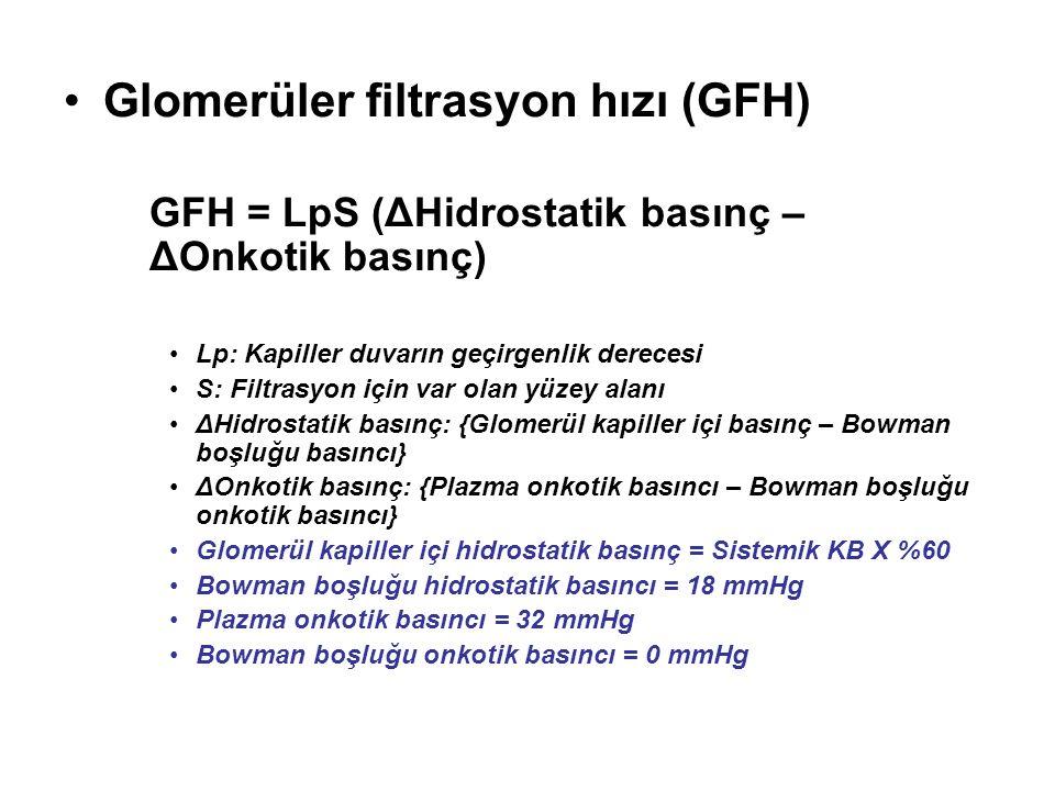 Glomerüler filtrasyon hızı (GFH) GFH = LpS (ΔHidrostatik basınç – ΔOnkotik basınç) Lp: Kapiller duvarın geçirgenlik derecesi S: Filtrasyon için var ol