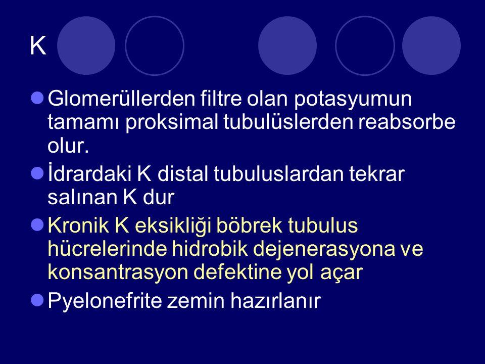 K Glomerüllerden filtre olan potasyumun tamamı proksimal tubulüslerden reabsorbe olur.