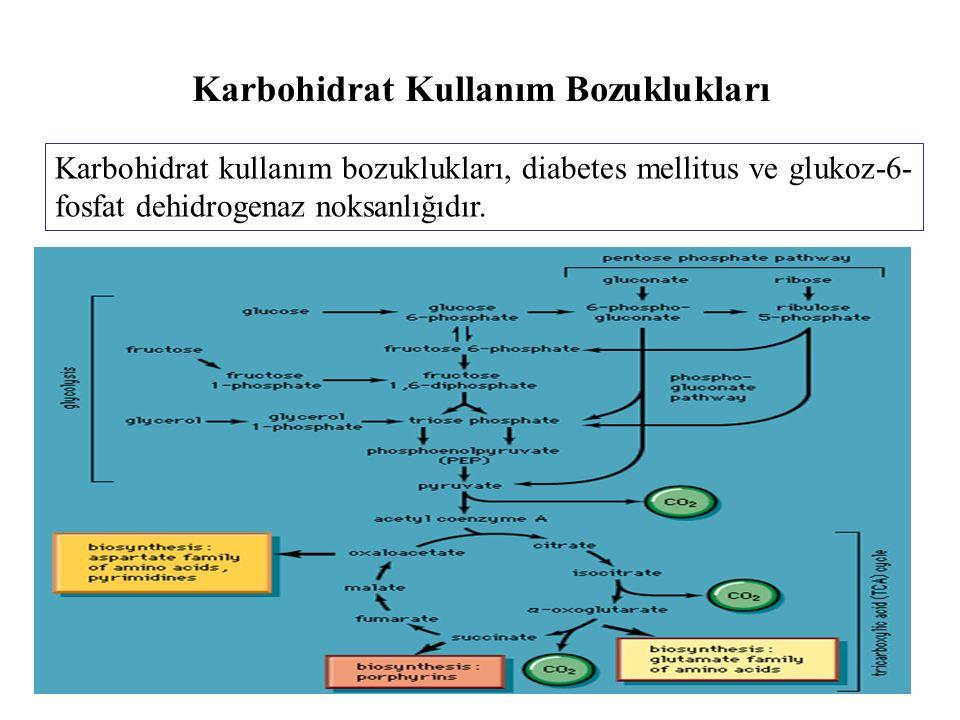 Karbohidrat Kullanım Bozuklukları Karbohidrat kullanım bozuklukları, diabetes mellitus ve glukoz-6- fosfat dehidrogenaz noksanlığıdır.