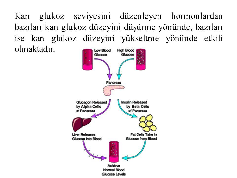 Kan glukoz seviyesini düzenleyen hormonlardan bazıları kan glukoz düzeyini düşürme yönünde, bazıları ise kan glukoz düzeyini yükseltme yönünde etkili olmaktadır.