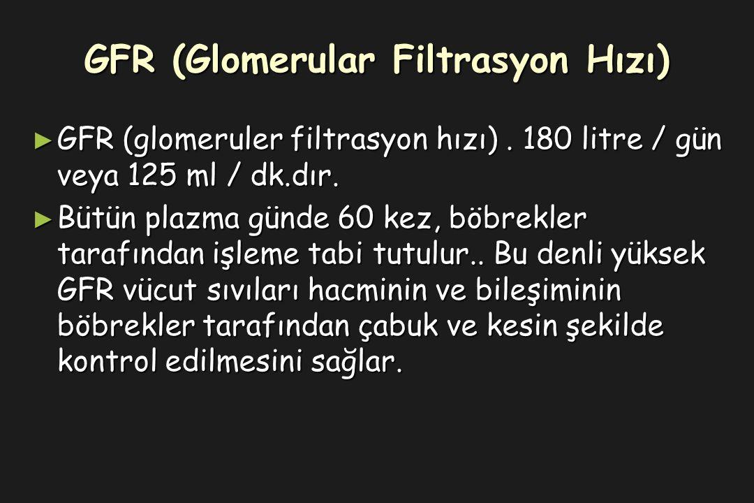 GFR (Glomerular Filtrasyon Hızı) ► GFR (glomeruler filtrasyon hızı).