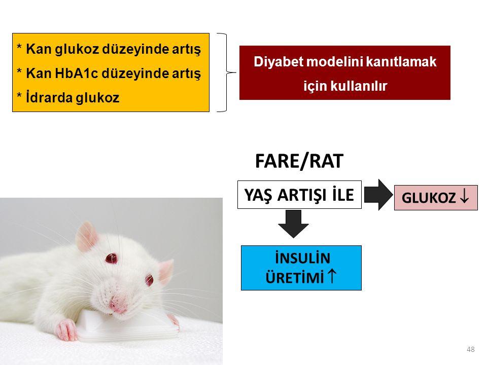 48 * Kan glukoz düzeyinde artış * Kan HbA1c düzeyinde artış * İdrarda glukoz GLUKOZ  YAŞ ARTIŞI İLE İNSULİN ÜRETİMİ  FARE/RAT Diyabet modelini kanıtlamak için kullanılır