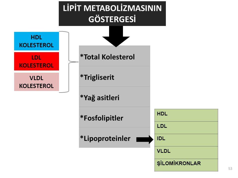 53 *Total Kolesterol *Trigliserit *Yağ asitleri *Fosfolipitler *Lipoproteinler LİPİT METABOLİZMASININ GÖSTERGESİ HDL LDL IDL VLDL ŞİLOMİKRONLAR HDL KOLESTEROL LDL KOLESTEROL VLDL KOLESTEROL