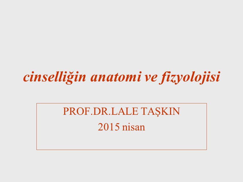 cinselliğin anatomi ve fizyolojisi PROF.DR.LALE TAŞKIN 2015 nisan