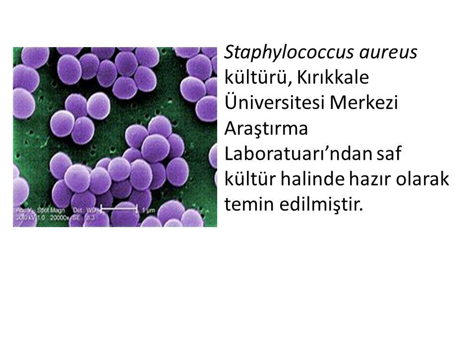 Staphylococcus aureus kültürü, Kırıkkale Üniversitesi Merkezi Araştırma Laboratuarı'ndan saf kültür halinde hazır olarak temin edilmiştir.