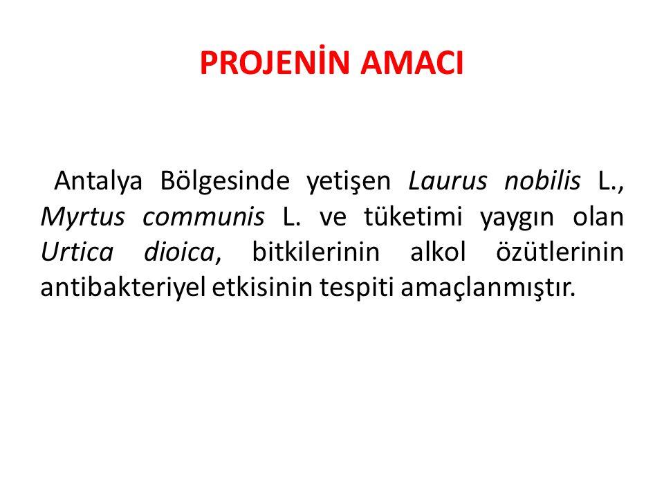 PROJENİN AMACI Antalya Bölgesinde yetişen Laurus nobilis L., Myrtus communis L. ve tüketimi yaygın olan Urtica dioica, bitkilerinin alkol özütlerinin