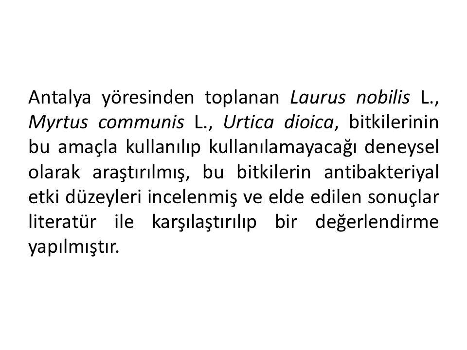 Antalya yöresinden toplanan Laurus nobilis L., Myrtus communis L., Urtica dioica, bitkilerinin bu amaçla kullanılıp kullanılamayacağı deneysel olarak