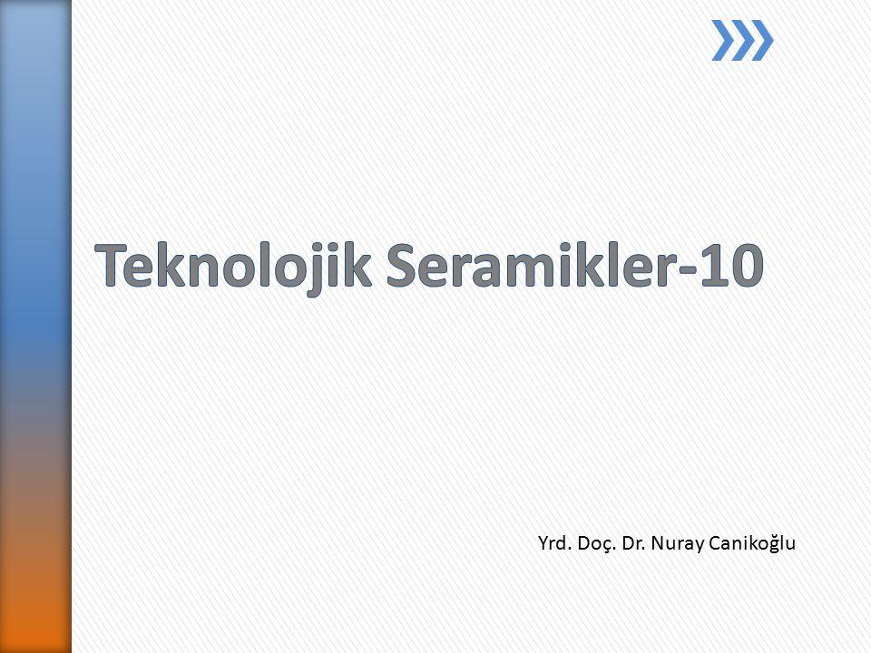 Yrd. Doç. Dr. Nuray Canikoğlu