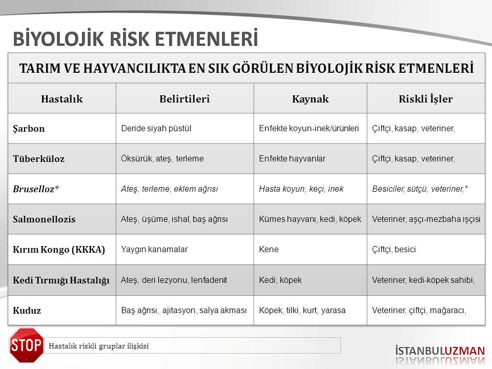 Hastalık riskli gruplar ilişkisi