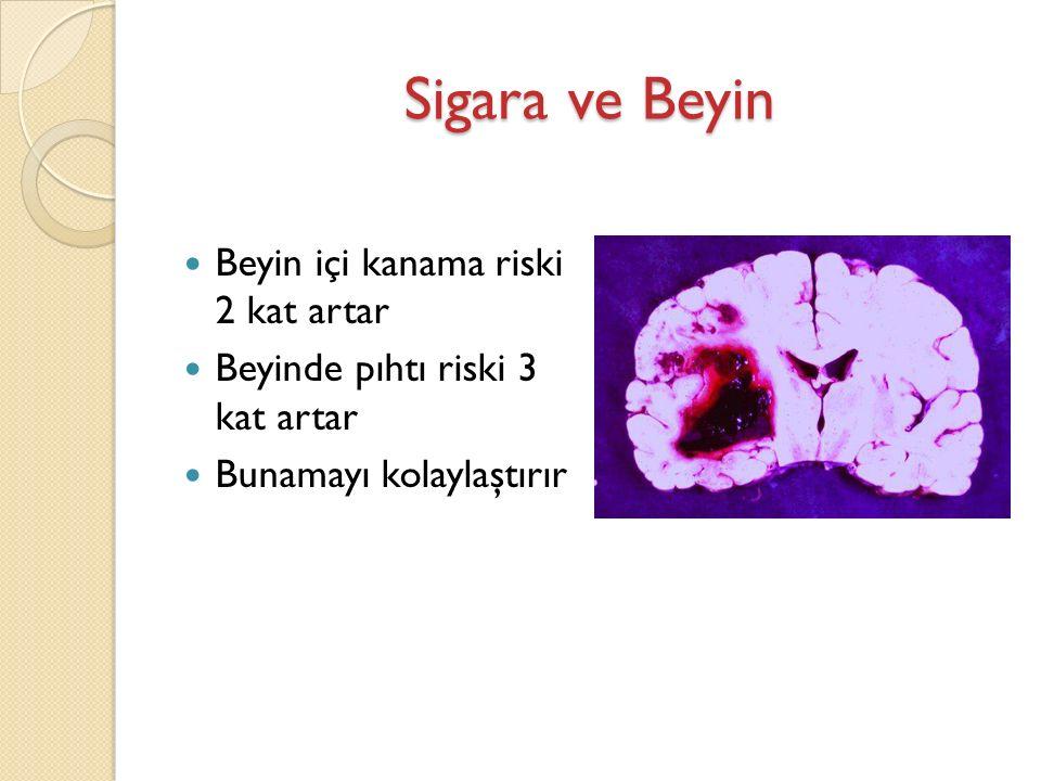 Sigara ve Beyin Beyin içi kanama riski 2 kat artar Beyinde pıhtı riski 3 kat artar Bunamayı kolaylaştırır