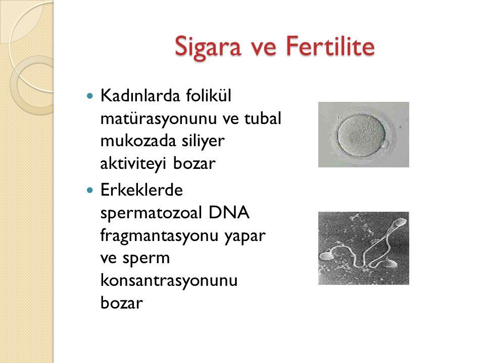 Sigara ve Fertilite Kadınlarda folikül matürasyonunu ve tubal mukozada siliyer aktiviteyi bozar Erkeklerde spermatozoal DNA fragmantasyonu yapar ve sperm konsantrasyonunu bozar