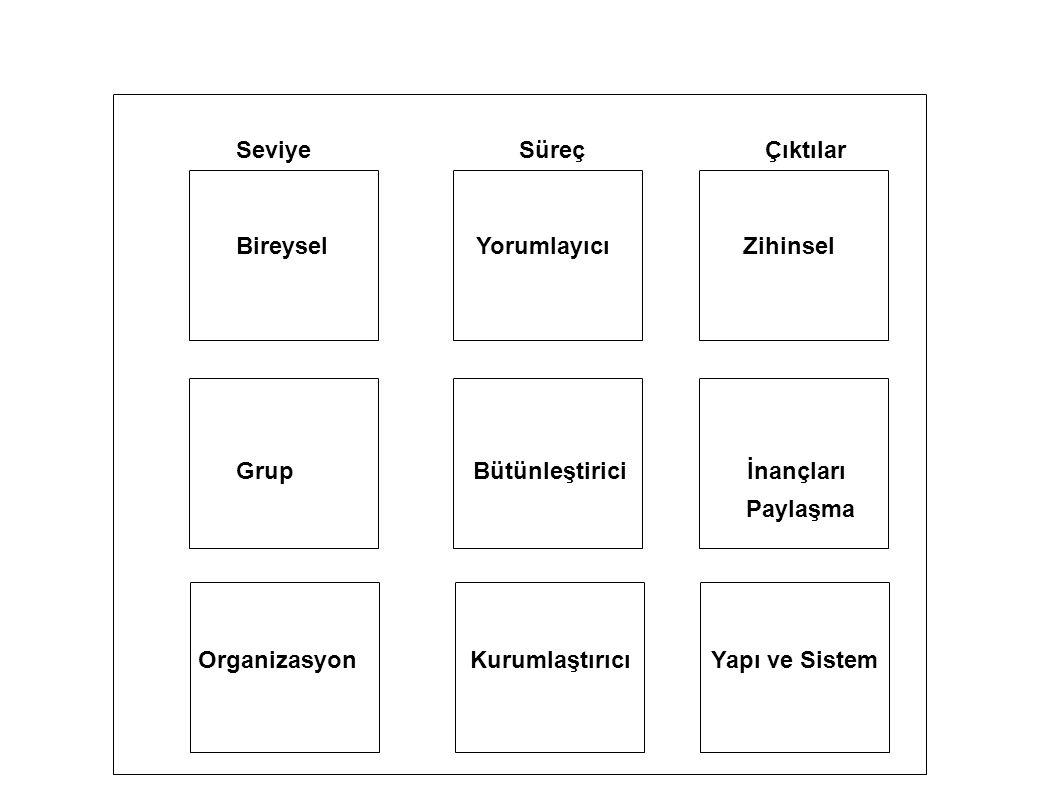 SeviyeSüreçÇıktılar Bireysel Yorumlayıcı Zihinsel Grup Bütünleştirici İnançları Paylaşma Organizasyon Kurumlaştırıcı Yapı ve Sistem