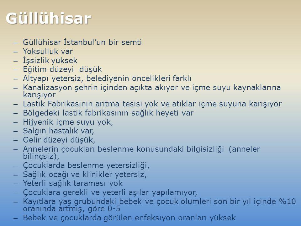– Güllühisar İstanbul'un bir semti – Yoksulluk var – İşsizlik yüksek – Eğitim düzeyi düşük – Altyapı yetersiz, belediyenin öncelikleri farklı – Kanalizasyon şehrin içinden açıkta akıyor ve içme suyu kaynaklarına karışıyor – Lastik Fabrikasının arıtma tesisi yok ve atıklar içme suyuna karışıyor – Bölgedeki lastik fabrikasının sağlık heyeti var – Hijyenik içme suyu yok, – Salgın hastalık var, – Gelir düzeyi düşük, – Annelerin çocukları beslenme konusundaki bilgisizliği (anneler bilinçsiz), – Çocuklarda beslenme yetersizliği, – Sağlık ocağı ve klinikler yetersiz, – Yeterli sağlık taraması yok – Çocuklara gerekli ve yeterli aşılar yapılamıyor, – Kayıtlara yaş grubundaki bebek ve çocuk ölümleri son bir yıl içinde %10 oranında artmış, göre 0-5 – Bebek ve çocuklarda görülen enfeksiyon oranları yüksek Güllühisar