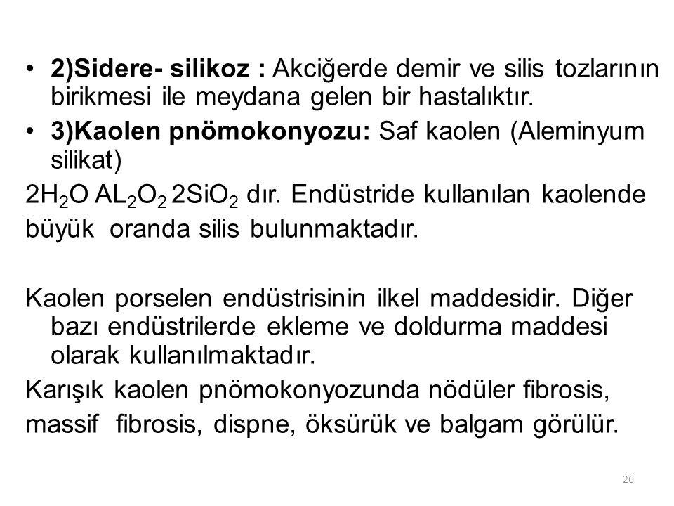 2)Sidere- silikoz : Akciğerde demir ve silis tozlarının birikmesi ile meydana gelen bir hastalıktır. 3)Kaolen pnömokonyozu: Saf kaolen (Aleminyum sili