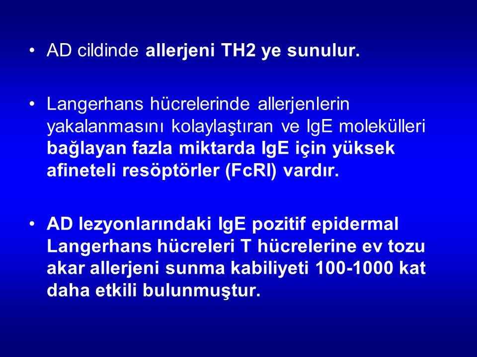 AD cildinde allerjeni TH2 ye sunulur.