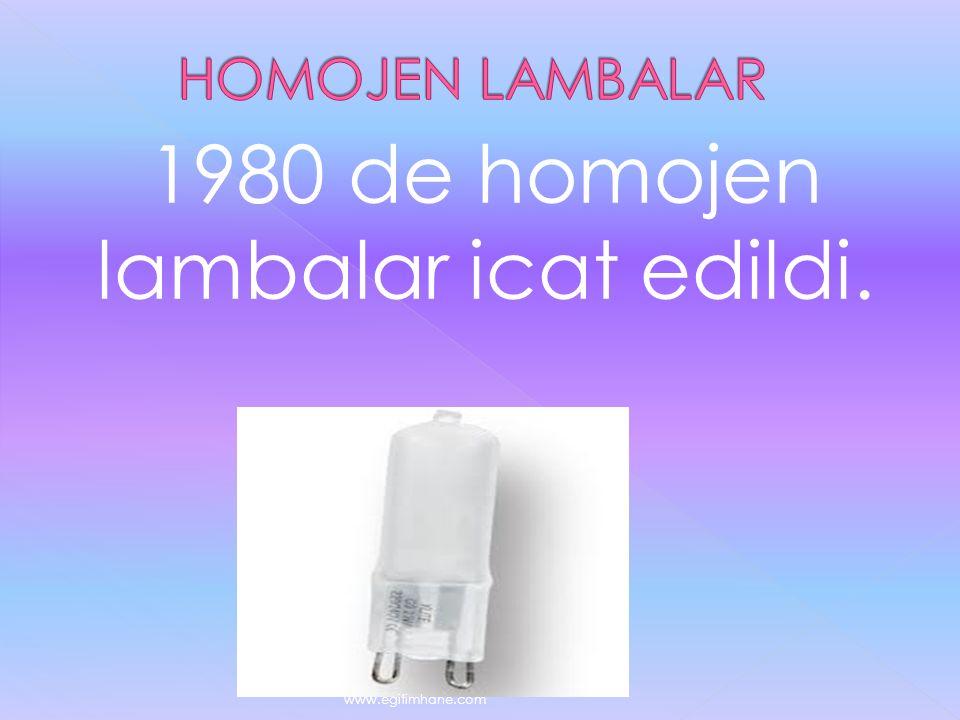 1980 de homojen lambalar icat edildi. www.egitimhane.com
