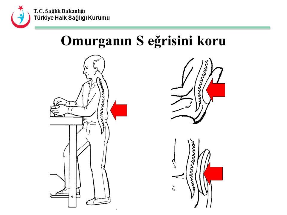 T.C. Sağlık Bakanlığı Türkiye Halk Sağlığı Kurumu Omurganın S eğrisini koru