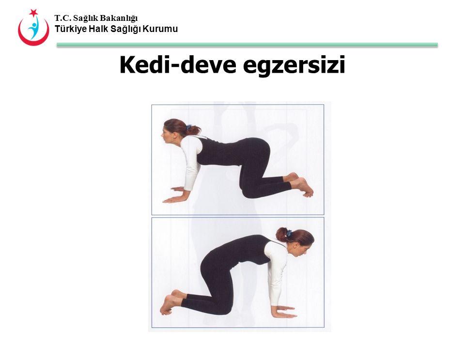 T.C. Sağlık Bakanlığı Türkiye Halk Sağlığı Kurumu Kedi-deve egzersizi