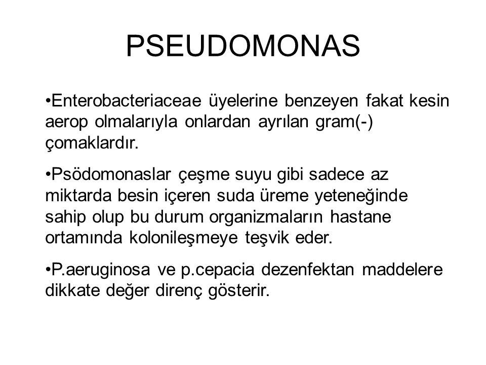 PSEUDOMONAS Enterobacteriaceae üyelerine benzeyen fakat kesin aerop olmalarıyla onlardan ayrılan gram(-) çomaklardır.