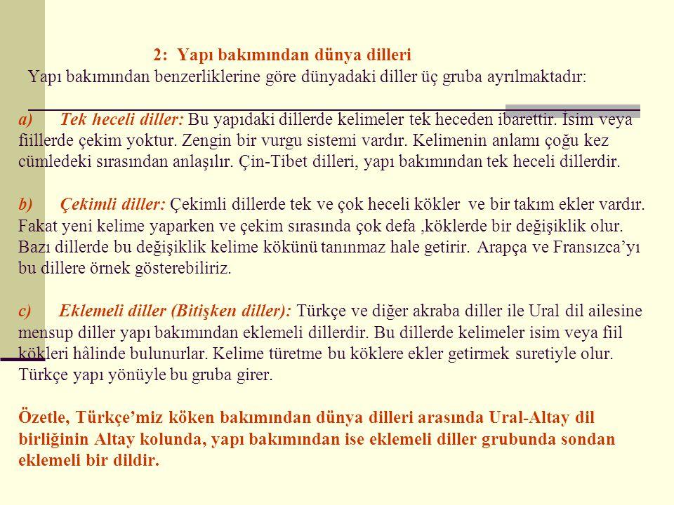 II. Hami-Sami dil ailesi: Ortadoğu ve Kuzey Afrika'da konuşulan diller bu aileye mensuptur.