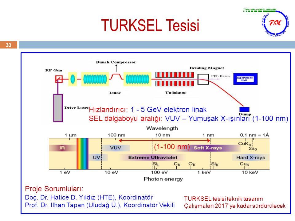 TURKSEL Tesisi 33 Proje Sorumluları: Doç. Dr. Hatice D. Yıldız (HTE), Koordinatör Prof. Dr. İlhan Tapan (Uludağ Ü.), Koordinatör Vekili Hızlandırıcı: