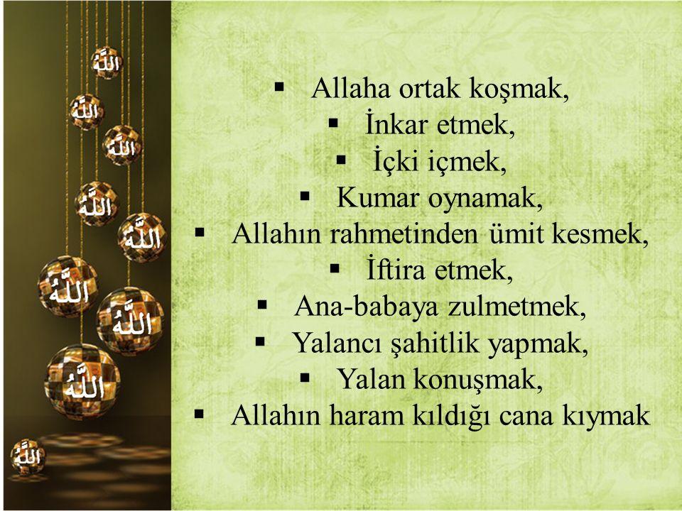  Allaha ortak koşmak,  İnkar etmek,  İçki içmek,  Kumar oynamak,  Allahın rahmetinden ümit kesmek,  İftira etmek,  Ana-babaya zulmetmek,  Yala