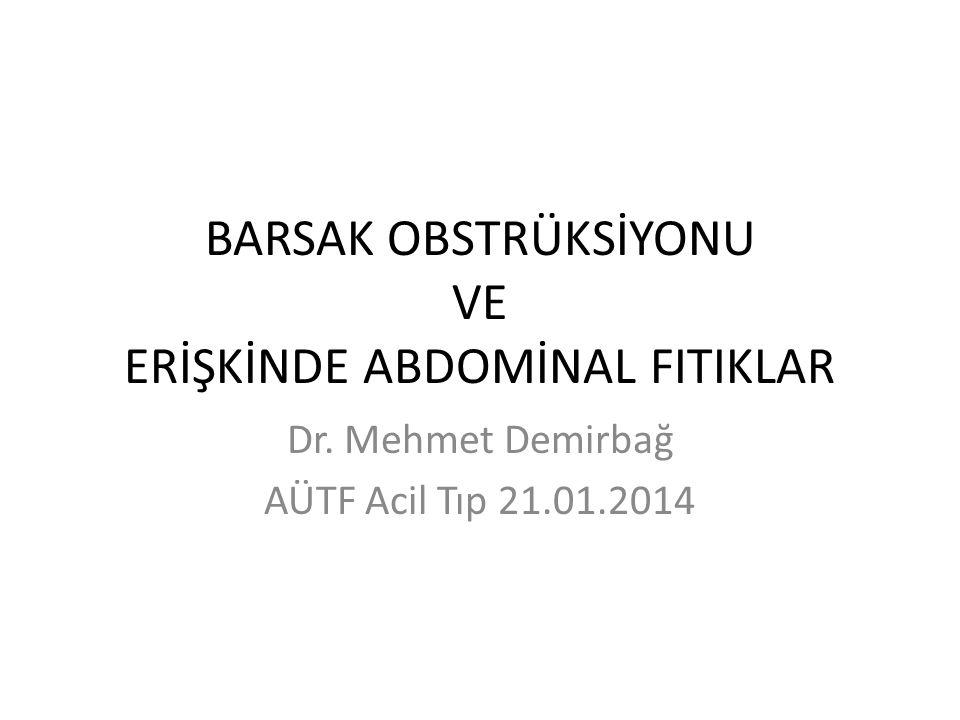 BARSAK OBSTRÜKSİYONU VE ERİŞKİNDE ABDOMİNAL FITIKLAR Dr. Mehmet Demirbağ AÜTF Acil Tıp 21.01.2014