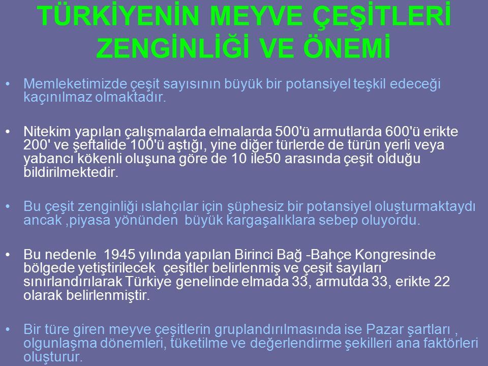 Limon İnterdonate Lamas Yediveren