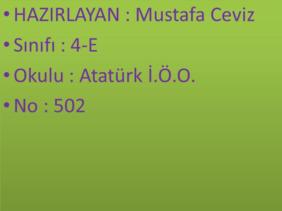 HAZIRLAYAN : Mustafa Ceviz Sınıfı : 4-E Okulu : Atatürk İ.Ö.O.