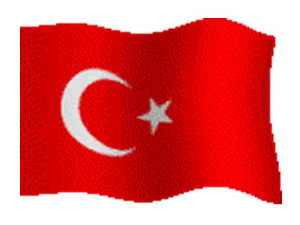 Seyit Onbaşı 270 kiloluk top mermisi ile Türk'ün kaderini taşıyordu…