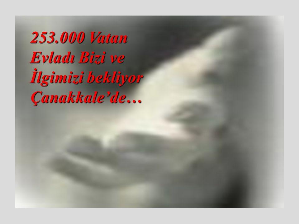 …ve Şehit düştü 253 bin fidan !