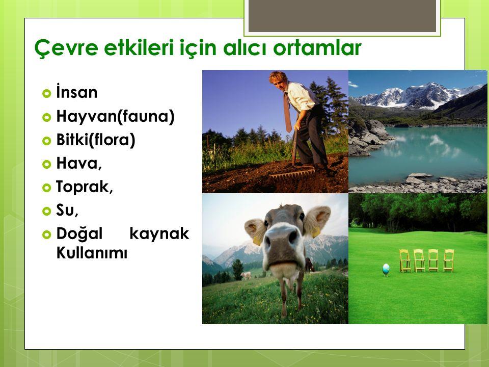 Çevre etkileri için alıcı ortamlar  İnsan  Hayvan(fauna)  Bitki(flora)  Hava,  Toprak,  Su,  Doğal kaynak Kullanımı