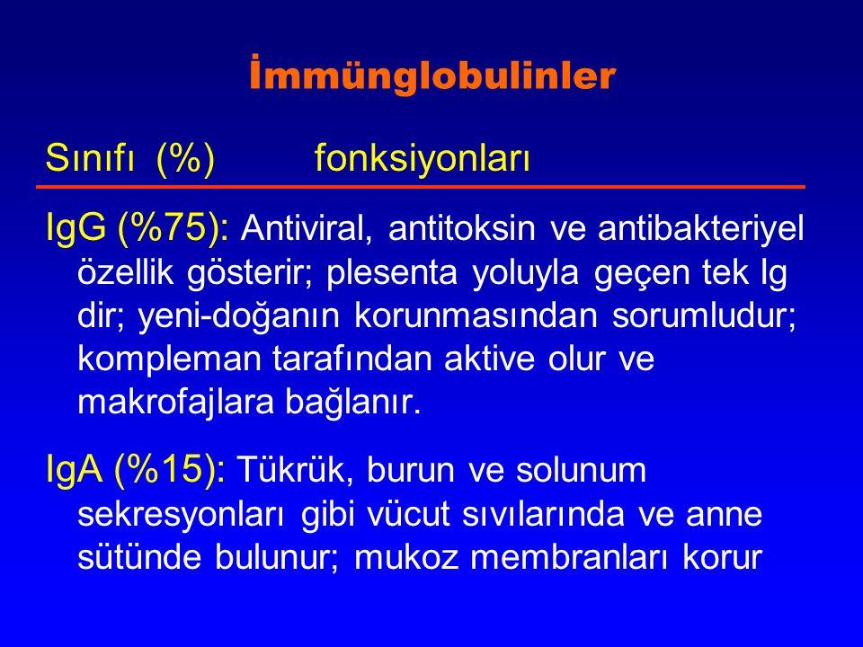 İmmünglobulinler Sınıfı (%) fonksiyonları IgG (%75): Antiviral, antitoksin ve antibakteriyel özellik gösterir; plesenta yoluyla geçen tek Ig dir; yeni