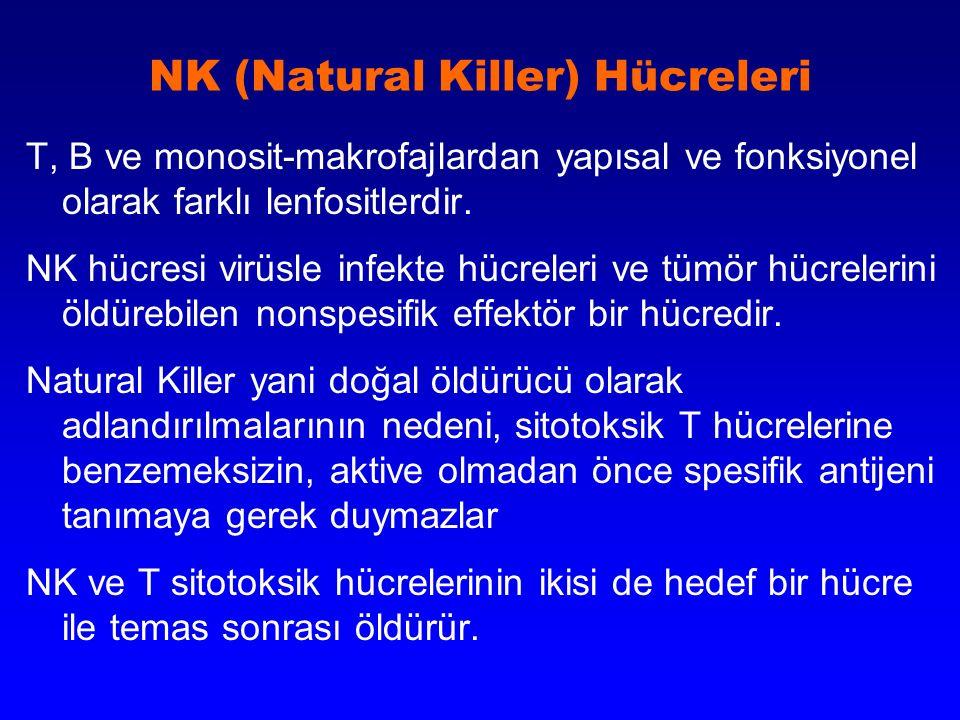 NK (Natural Killer) Hücreleri T, B ve monosit-makrofajlardan yapısal ve fonksiyonel olarak farklı lenfositlerdir. NK hücresi virüsle infekte hücreleri