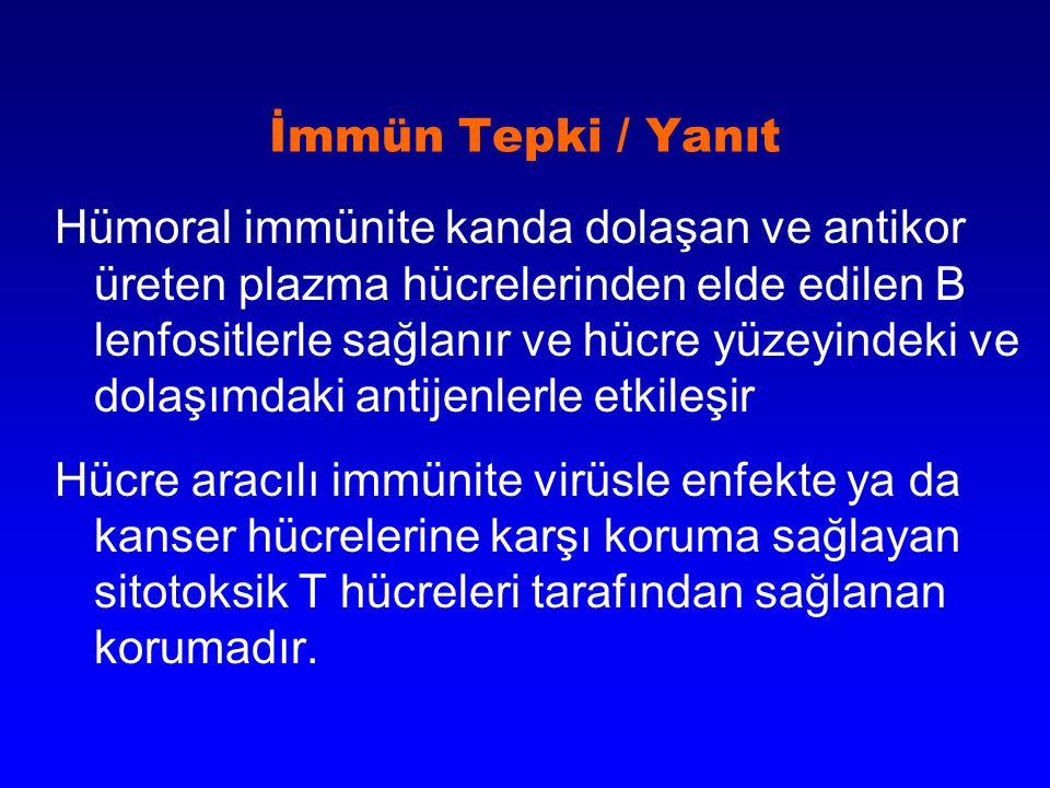 İmmün Tepki / Yanıt Hümoral immünite kanda dolaşan ve antikor üreten plazma hücrelerinden elde edilen B lenfositlerle sağlanır ve hücre yüzeyindeki ve