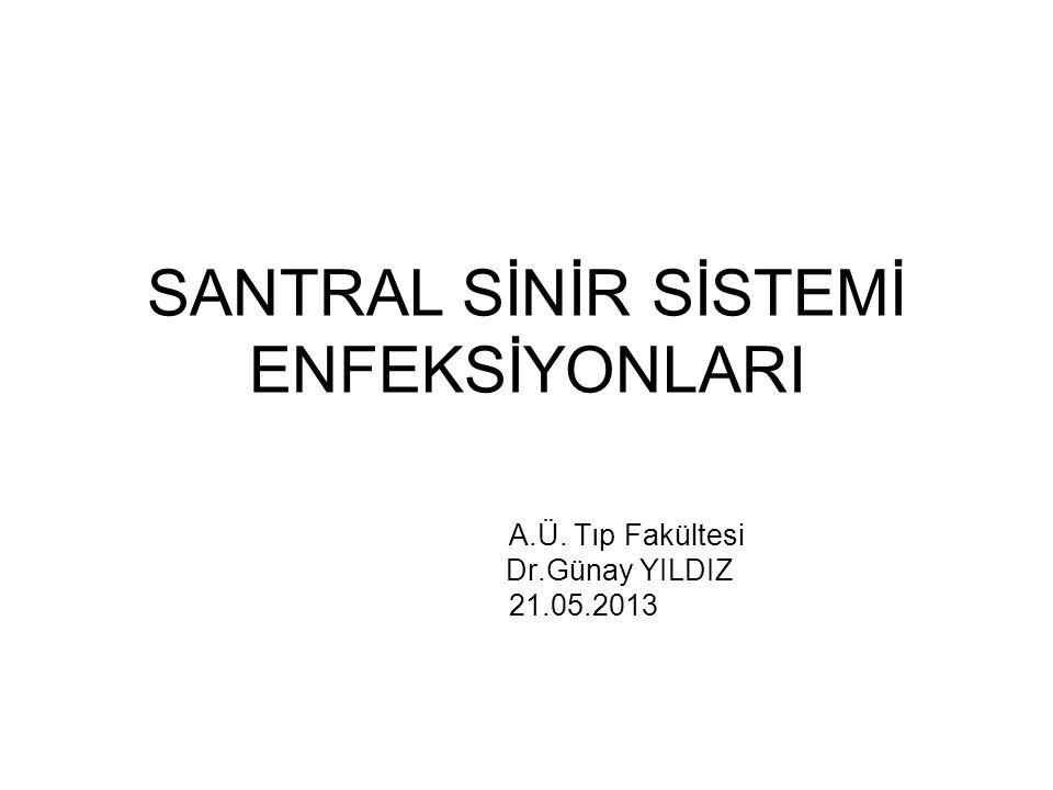 SANTRAL SİNİR SİSTEMİ ENFEKSİYONLARI A.Ü. Tıp Fakültesi Dr.Günay YILDIZ 21.05.2013