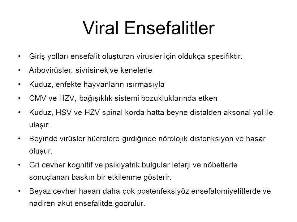 Viral Ensefalitler Giriş yolları ensefalit oluşturan virüsler için oldukça spesifiktir. Arbovirüsler, sivrisinek ve kenelerle Kuduz, enfekte hayvanlar