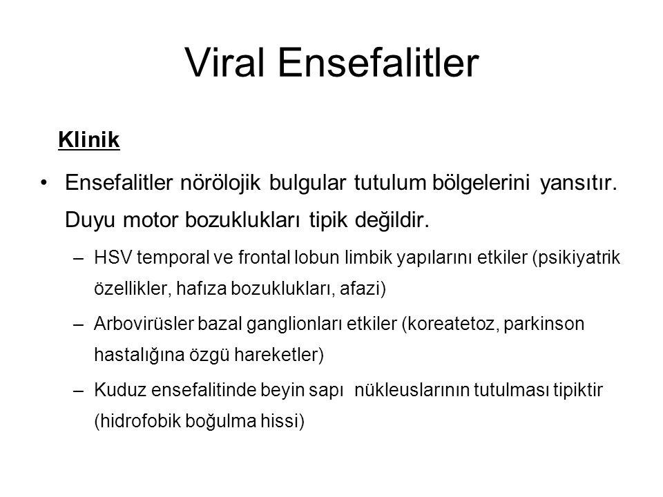 Viral Ensefalitler Klinik Ensefalitler nörölojik bulgular tutulum bölgelerini yansıtır. Duyu motor bozuklukları tipik değildir. –HSV temporal ve front