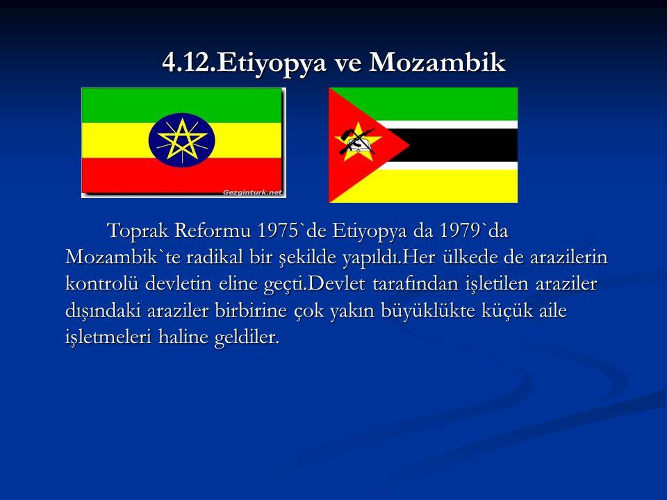 4.12.Etiyopya ve Mozambik Toprak Reformu 1975`de Etiyopya da 1979`da Mozambik`te radikal bir şekilde yapıldı.Her ülkede de arazilerin kontrolü devletin eline geçti.Devlet tarafından işletilen araziler dışındaki araziler birbirine çok yakın büyüklükte küçük aile işletmeleri haline geldiler.