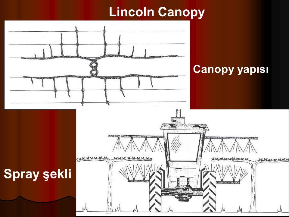 Spray şekli Canopy yapısı Lincoln Canopy