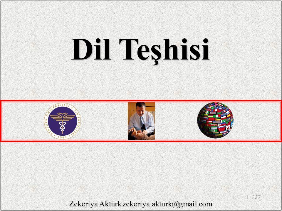 1 Dil Teşhisi / 37 Zekeriya Aktürk zekeriya.akturk@gmail.com