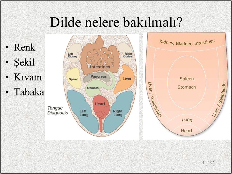 Dilde nelere bakılmalı Renk Şekil Kıvam Tabaka / 374