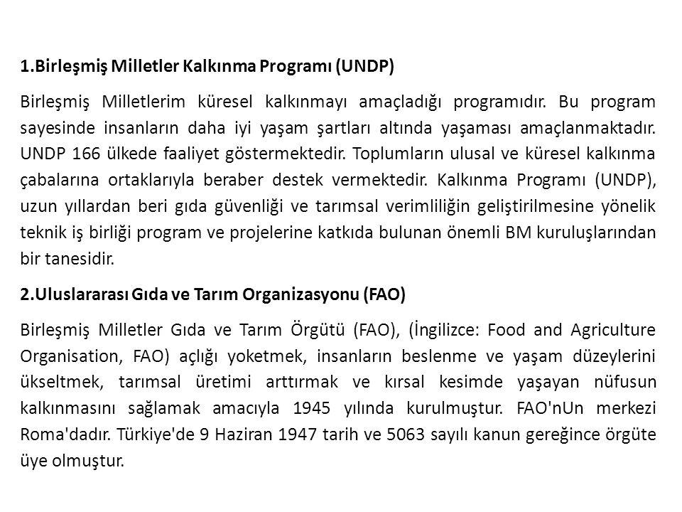1.Birleşmiş Milletler Kalkınma Programı (UNDP) Birleşmiş Milletlerim küresel kalkınmayı amaçladığı programıdır. Bu program sayesinde insanların daha i