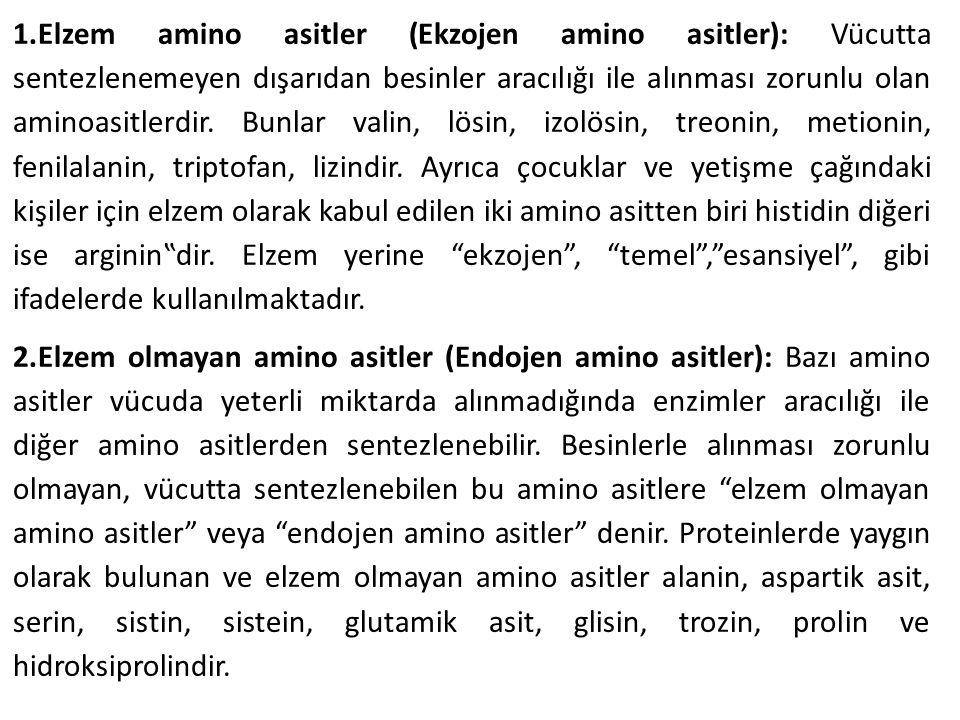 1.Elzem amino asitler (Ekzojen amino asitler): Vücutta sentezlenemeyen dışarıdan besinler aracılığı ile alınması zorunlu olan aminoasitlerdir. Bunlar