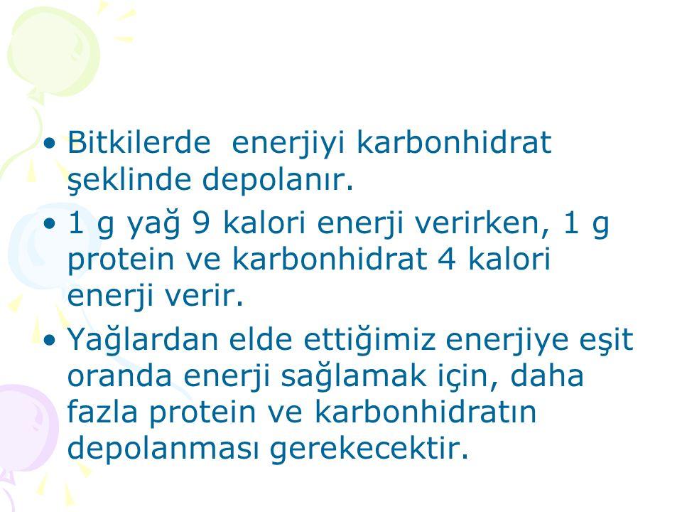 Bitkilerde enerjiyi karbonhidrat şeklinde depolanır.