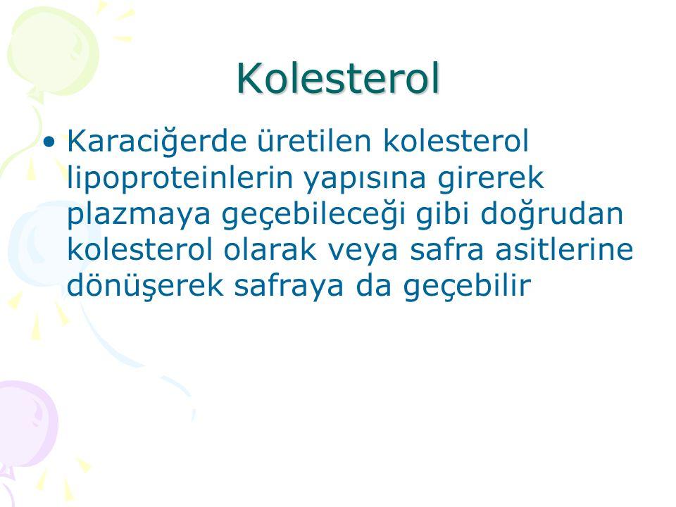 Kolesterol Karaciğerde üretilen kolesterol lipoproteinlerin yapısına girerek plazmaya geçebileceği gibi doğrudan kolesterol olarak veya safra asitlerine dönüşerek safraya da geçebilir