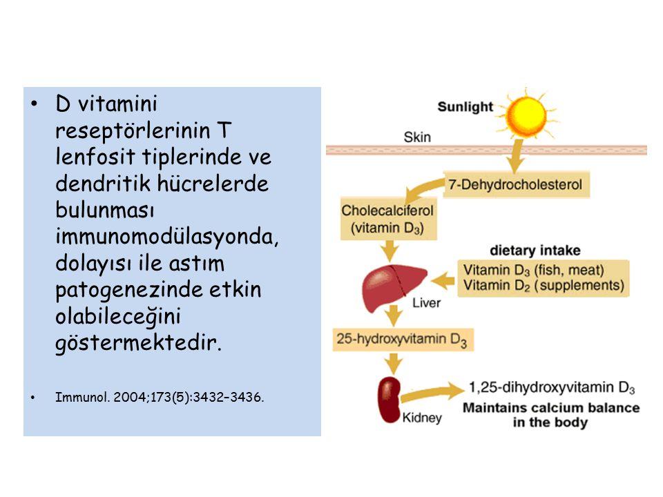 D vitamini reseptörlerinin T lenfosit tiplerinde ve dendritik hücrelerde bulunması immunomodülasyonda, dolayısı ile astım patogenezinde etkin olabileceğini göstermektedir.