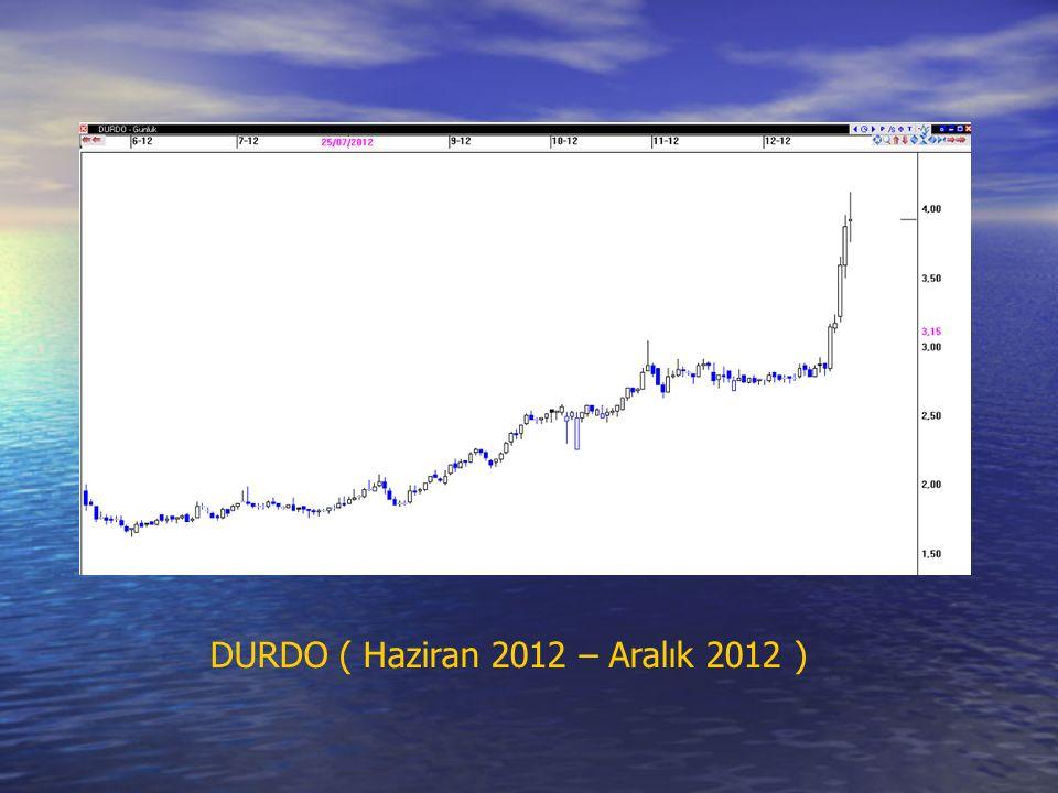 DURDO ( Haziran 2012 – Aralık 2012 )